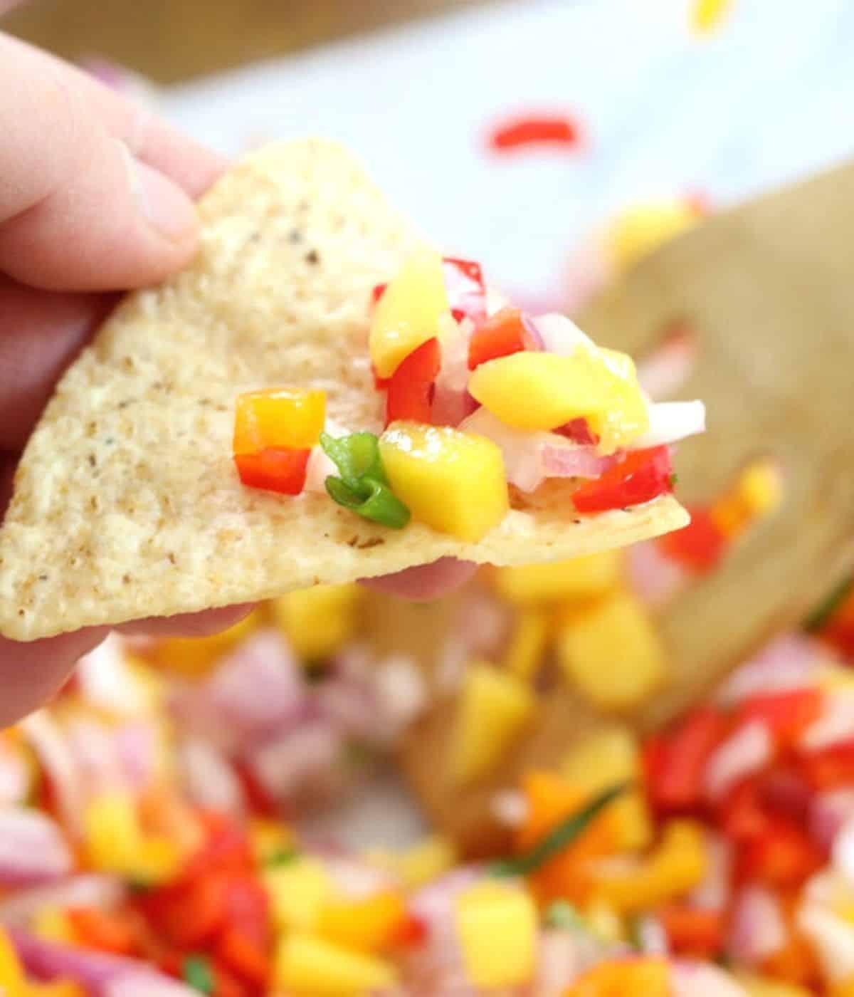 salsa on tortilla chip