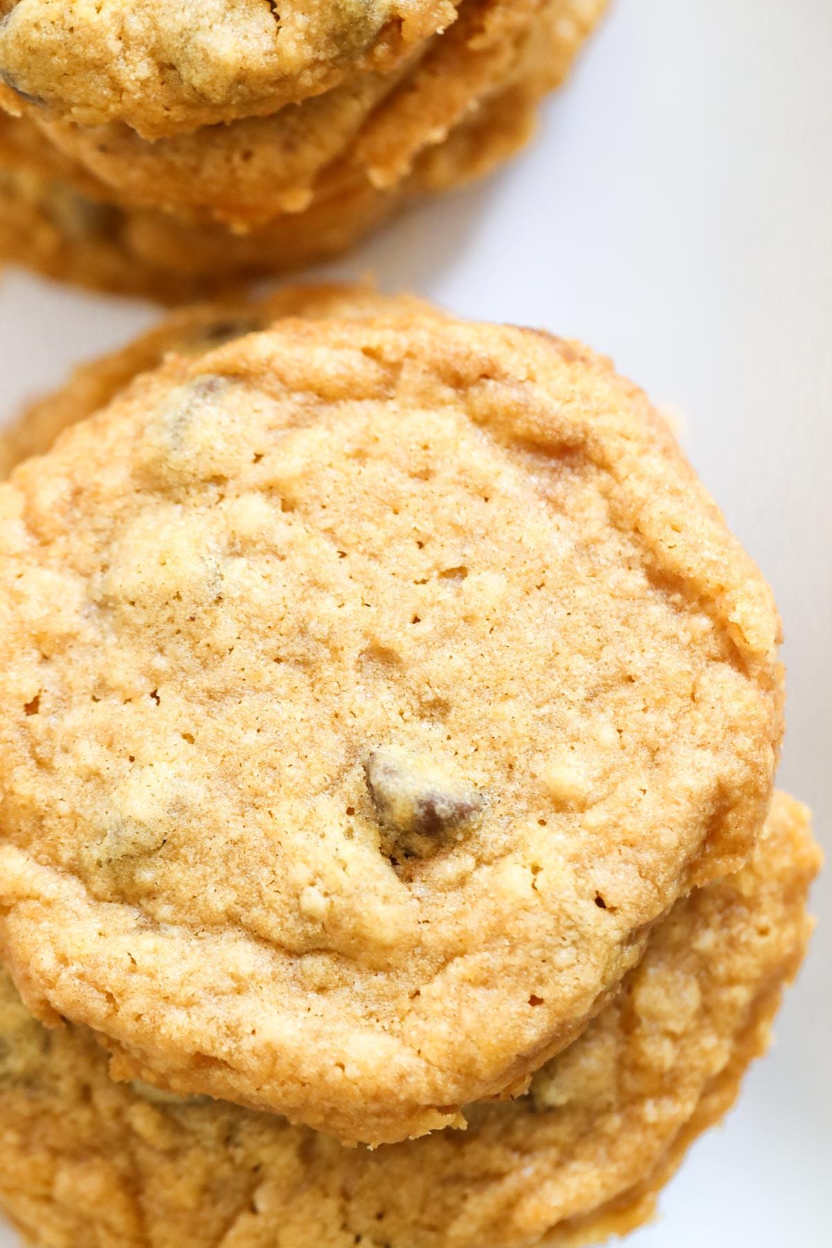 Pumpkin cookie up close